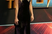 Anna Faris Evening Dress