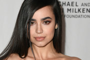 Sofia Carson Long Straight Cut